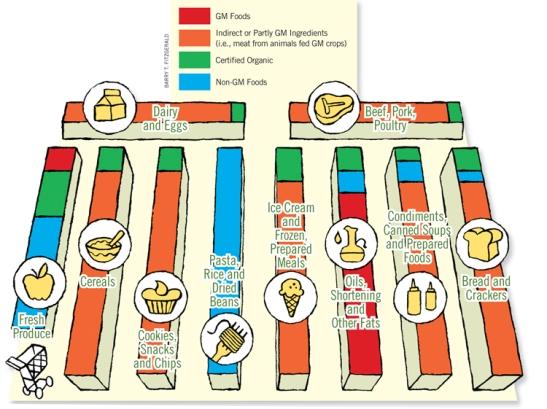 GM Foods Chart(1)